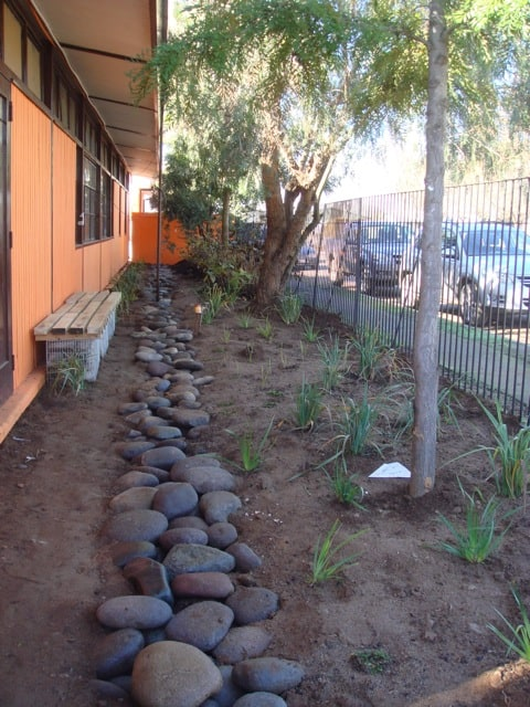 Spaces were refurbished with trees and plants, using natural materials