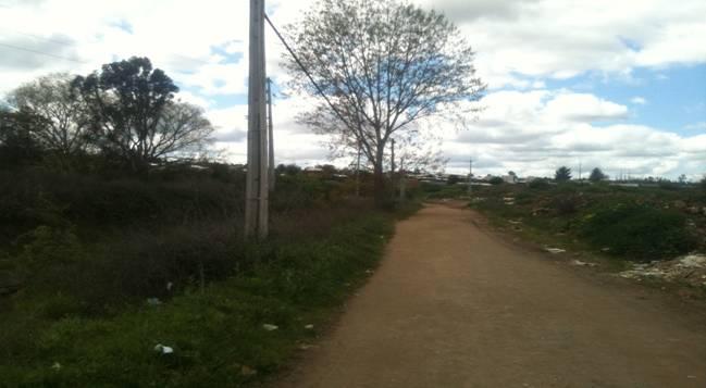 Alrededores de Cauquenes donde se instalaría el parque
