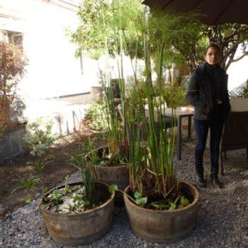 Maceteros instalados en el jardín