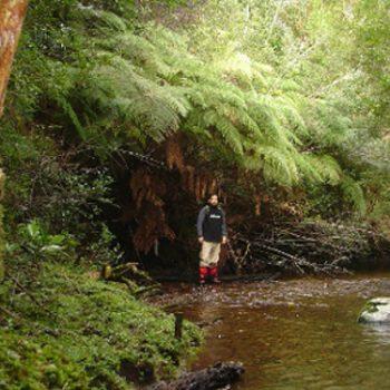 El entorno natural del parque  Katalapi
