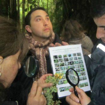 En terreno se reconoce y compara la flora presente en Parque Katalapi