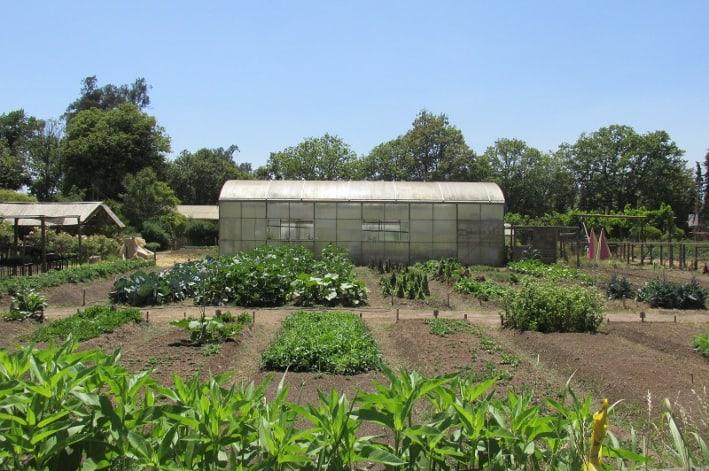 The  Arts & Crafts School is inside the Escuela Agroecológica de Pirque