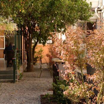 Vista desde el jardín hacia escalera para ingresar a hospital