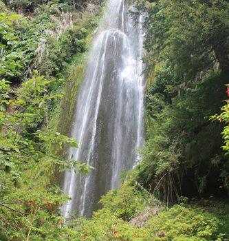 Happiness Waterfall