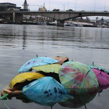 1º lugar categoría A - Título: Danzas de paraguas sobre el río Calle Calle - CEI San Marcos, Valdivia