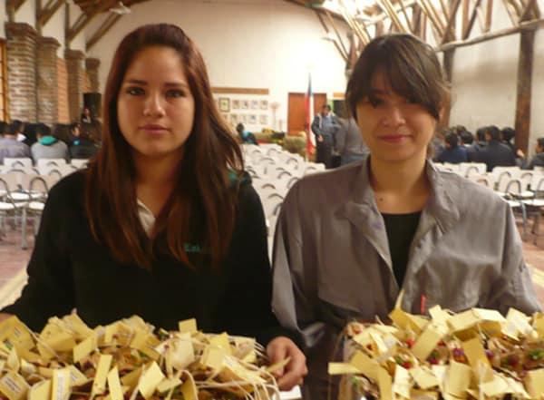 Los estudiantes de la Escuela Agroecológica de Pirque podrán formarse en la Escuela de Artes y Oficios