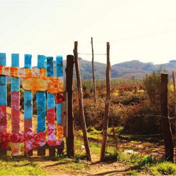 Premio Chilexpress Categoría B: Recorrido Visual - Colegio San Juan de Dios, Nacimiento