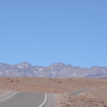 El camino que conduce Talabre