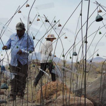Miembros de la comunidad de Talabre participando activamente del montaje