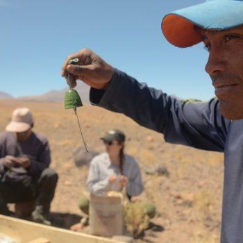 Miembros de la comunidad de Talabre participando activamente del montaje, fotografía de Pedro Valenzuela