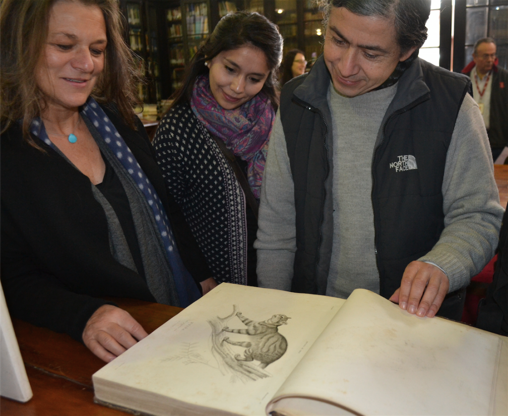 Madeline Hurtado, Daniela Mellado and Iván Diaz alongside the newly donated moss