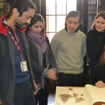 Victor Ardiles explica sobre muestras botánicas de MNHN