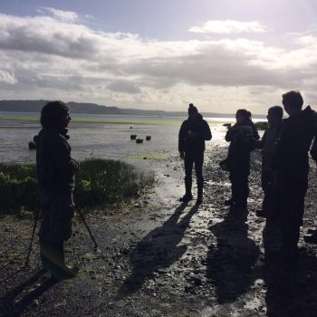 Iván Díaz together with the illustrators in the Pullao Wetland, Chiloé