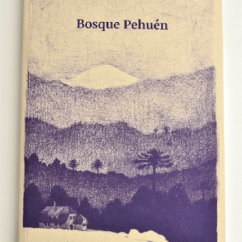 Book cover of Bosque Pehuén, Andean Araucanía/Chile