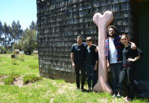 El equipo de ilustradores en Chiloé