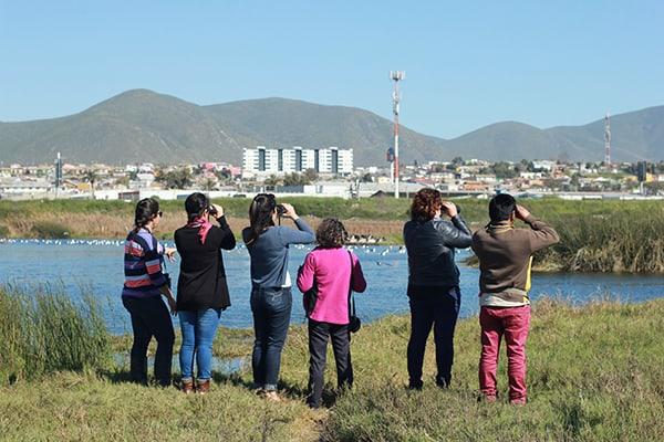 Active Teachers in El Culebrón Wetland