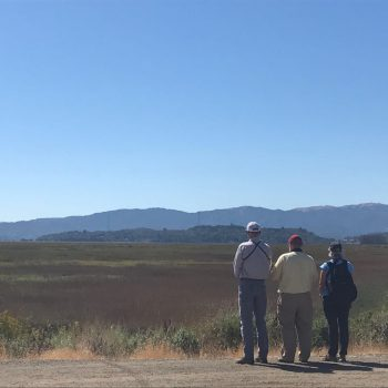 A visit to the Sonoma Land Trust wetland as a case study