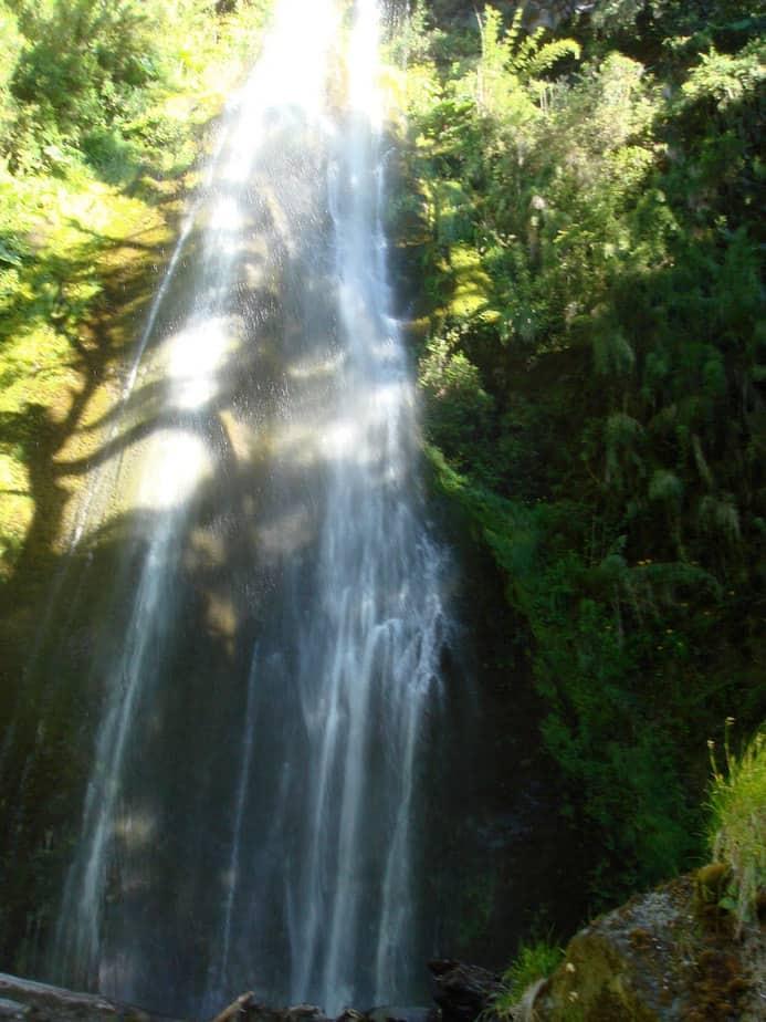 Waterfall Bosque Pehuén