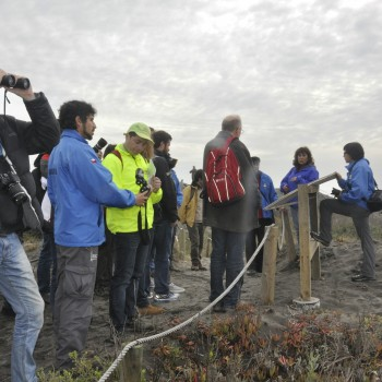 The OECD Delegation visiting the Río Maipo Wetland