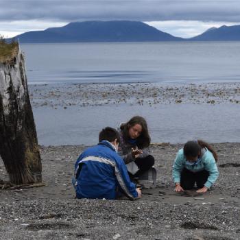 Niños en terreno durante el Campamento Naturalista, en Cabo San Isidro