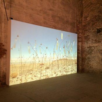 El video de Animitas fue proyectado en la Bienal