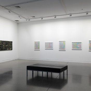 A view of Charlotte Graham's Kaitiaki exhibition.